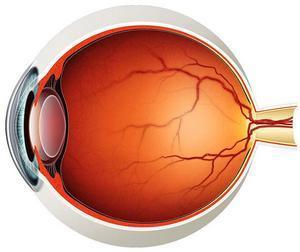 Диагностические мероприятия в отделении офтальмологии