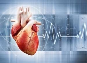 Кардиология в Израиле – инновационный подход в лечении болезней сердца