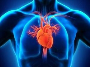 Современная диагностика заболеваний сердца