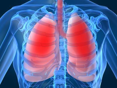 Диагностика туберкулеза