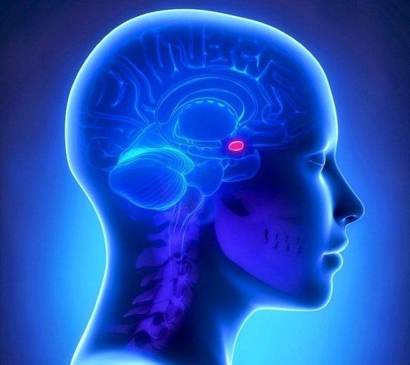 Диагностика рака гипофиза